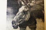 """ Лошадь и конюх """