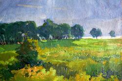 """""""После дождя """""""