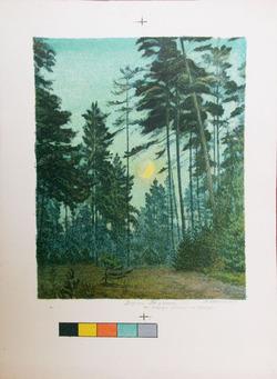 """Лесной пейзаж. Утро"""