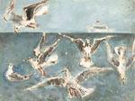 """"""" Парящие чайки и белый пароход """"."""